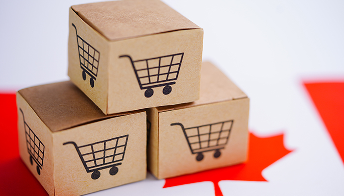 eCommerce Report: Canadian Internet User Profile